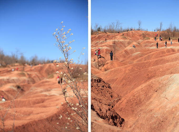 unique engagement photo location cheltenham badlands