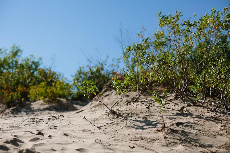prince-edward-county-sandbanks-provincial-park-janice-yi-photography-3.jpg