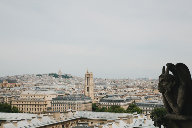 paris-notre-dame-photos-gargoyle-view