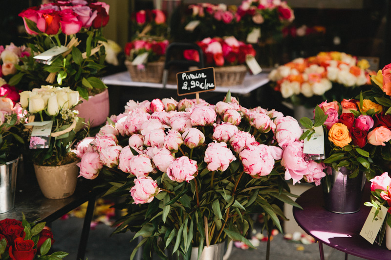 paris-travel-photos-flower-markets-pink-peonies