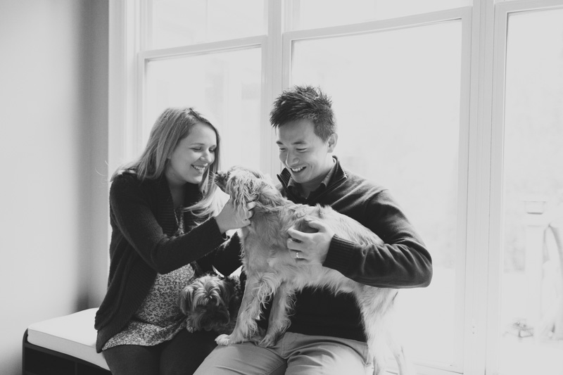 lifestyle-maternity-photography-with-pets