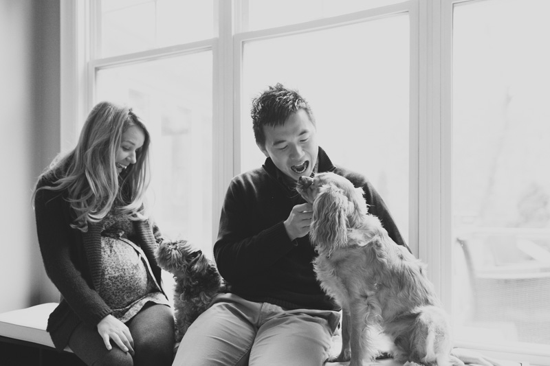 maternity-photography-with-pets