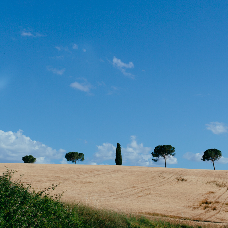 tuscany-photographer-siena-photos-italy-62