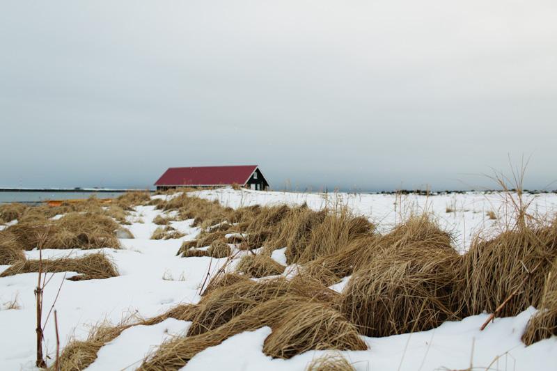 iceland-wedding-photographer-26