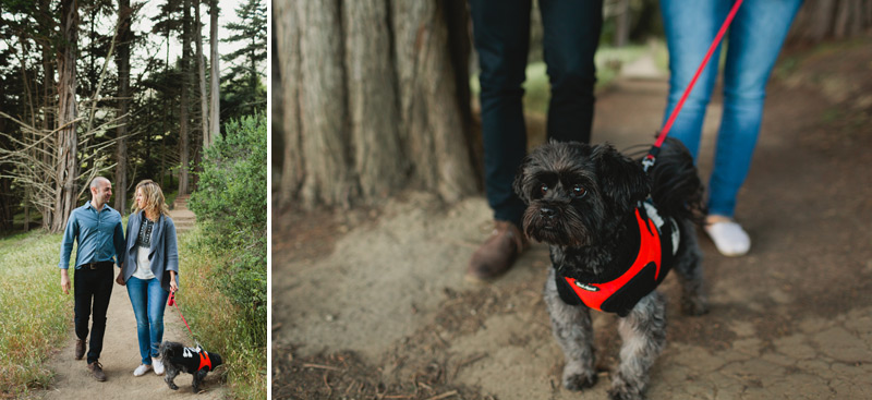 engagement pictures with your dog