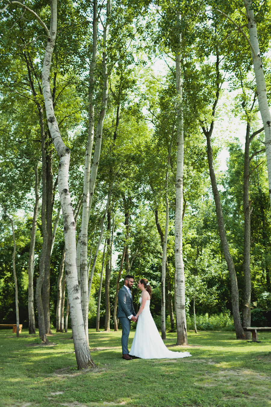 holland marsh winery wedding