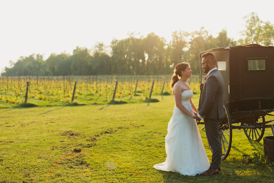 holland marsh winery wedding photos