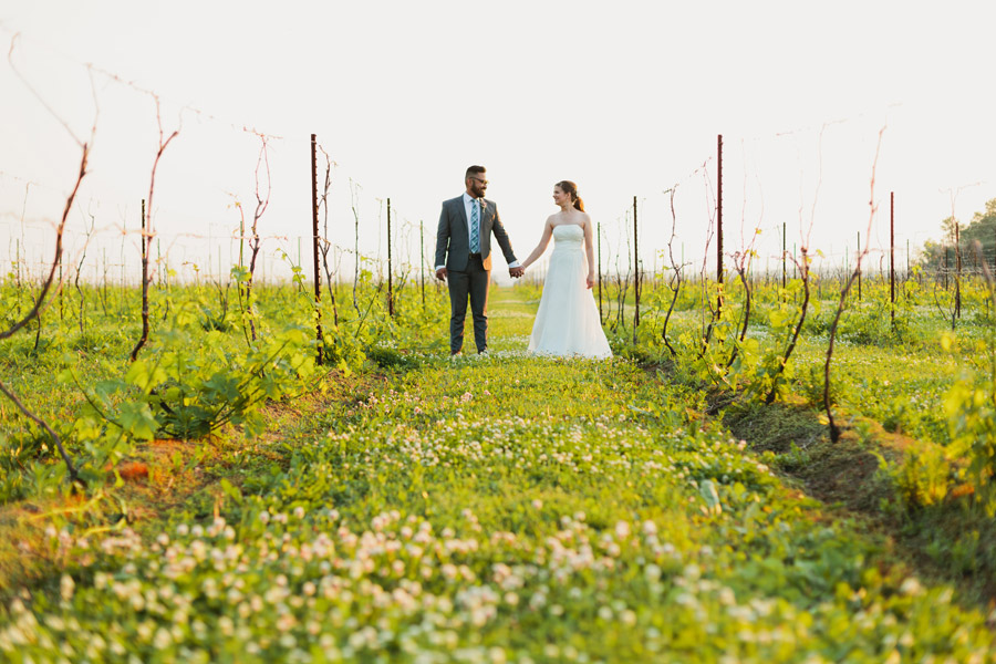 holland marsh winery wedding portraits