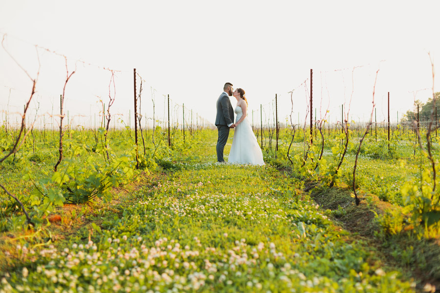 winery wedding portrait ideas