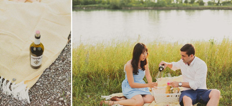 picnic engagement photo ideas