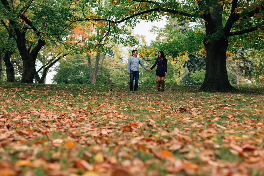 Engagement photos in High Park