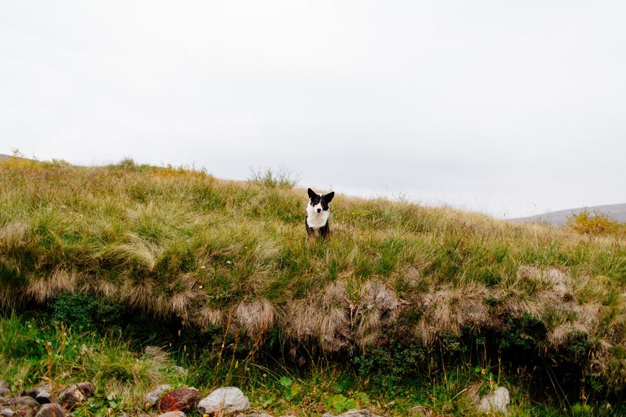 062-Iceland-travel-photography