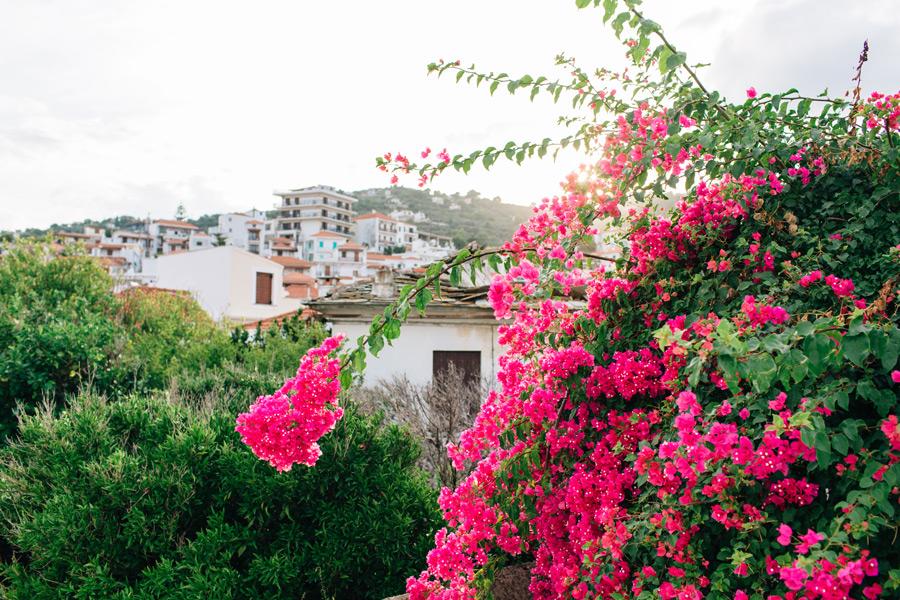 Skopelos the Sporades