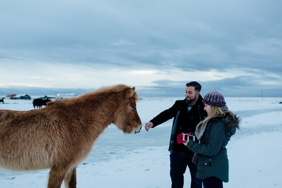 Icelandic horses engagement photos